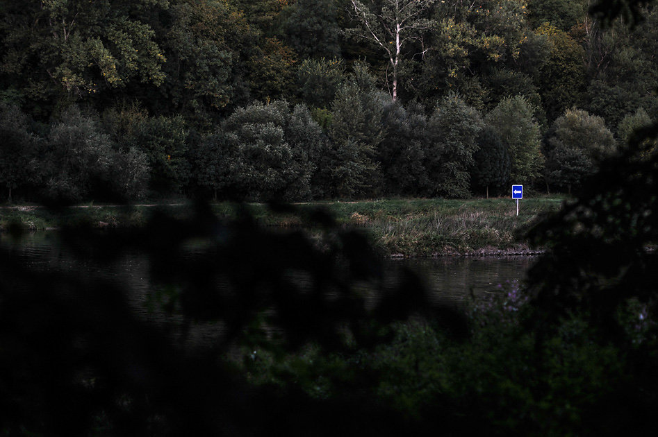 Lužní lesy pod Mělníkem